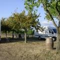 Stellplatz Clos des Cabanes