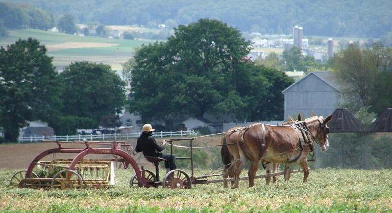amish-farm1